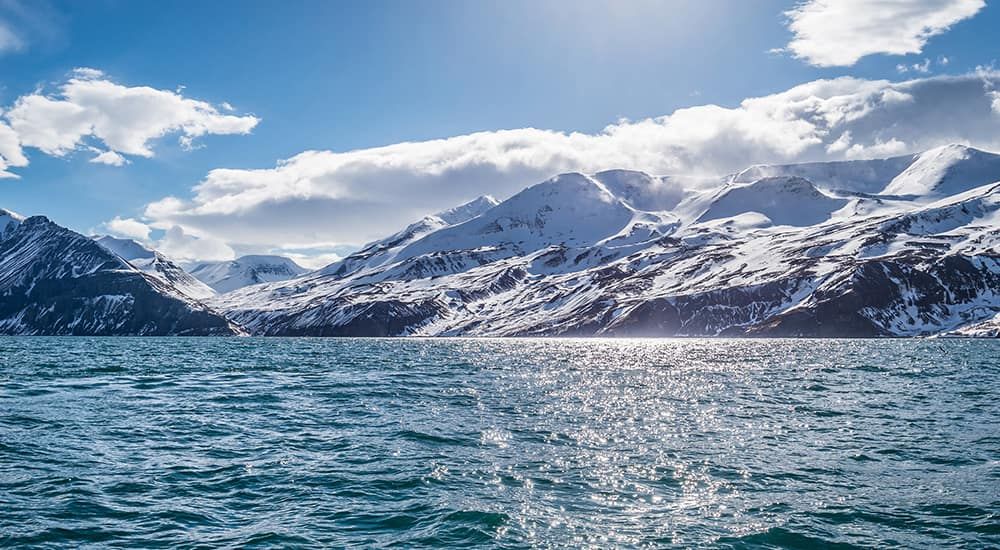 Cruise past stunning glaciers in Iceland