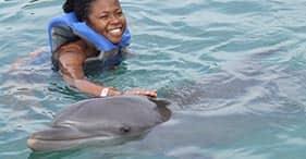 Dolphin Encounter with Stingray Sandbar