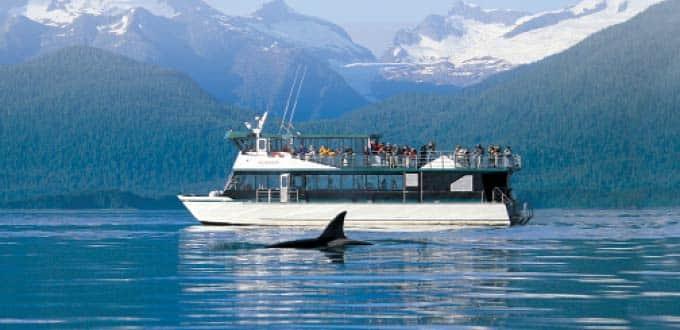 689f8725c2ff3 Mendenhall Glacier   Whale Quest