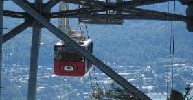 Mendenhall Glacier & Mount Roberts Tram