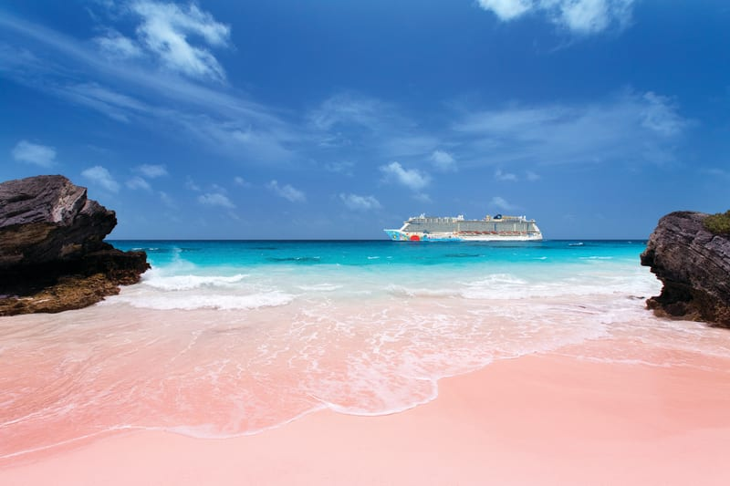 bermuda s best bet pink sand beaches ncl旅行ブログ