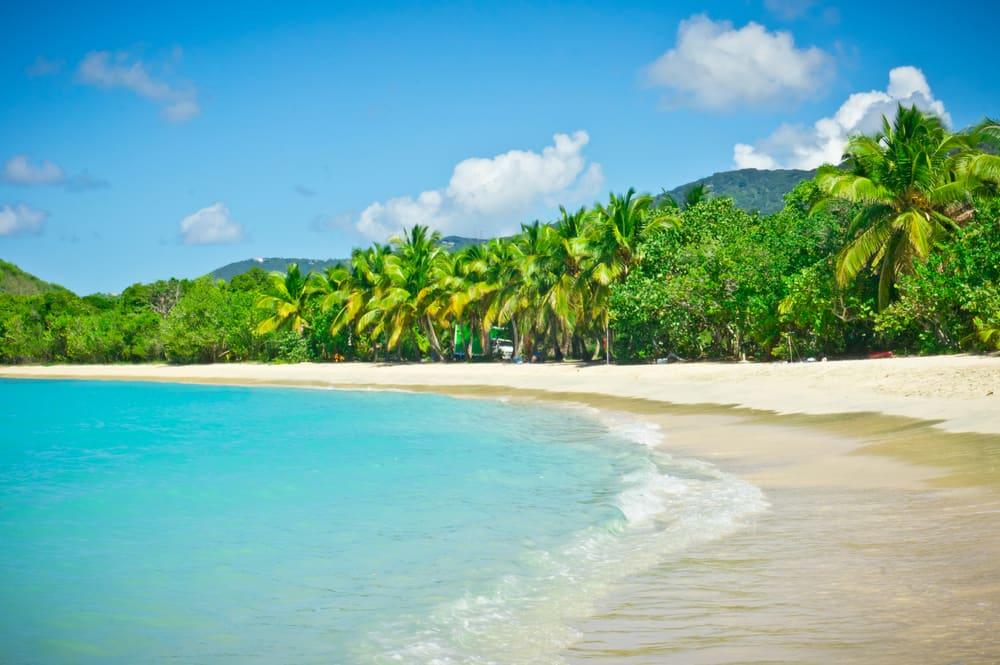 Pristine Beach in Tortola