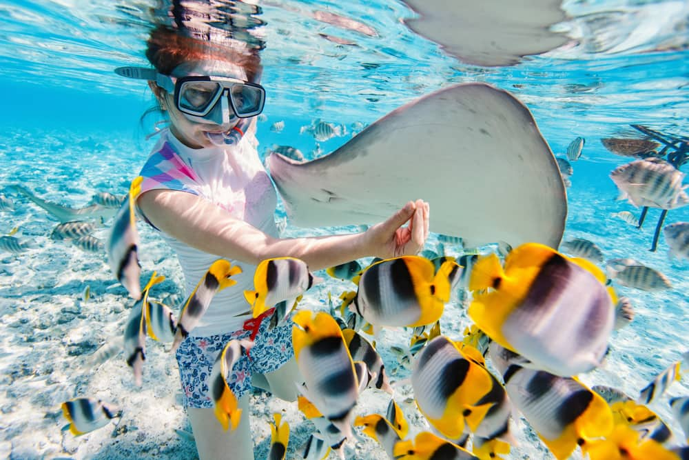 Enjoy Snorkeling in the Bahamas on a Cruise to Nassau with Norwegian