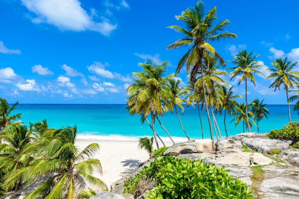 Kick Your Toes in the Powdery White Sand in Barbados