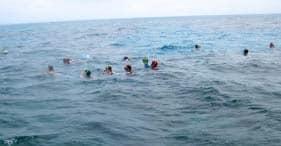 צלילה עם שנורקלבספינה טרופה בברמודה